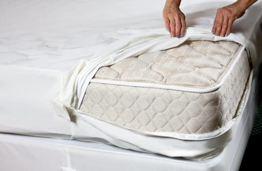 Best Bed Bug Mattress Cover Reviews 2020 Consumer Reports
